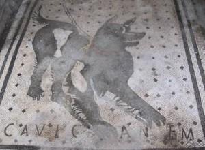 cave canum Pas op voor de hond mozaïken vloer in pompei